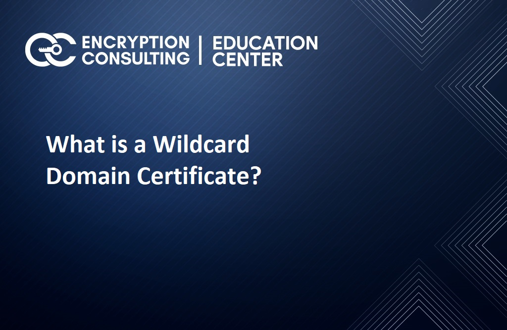 What is a Wildcard Domain Certificate?