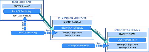 Certificate Stages - Root - Intermediate - End Entity